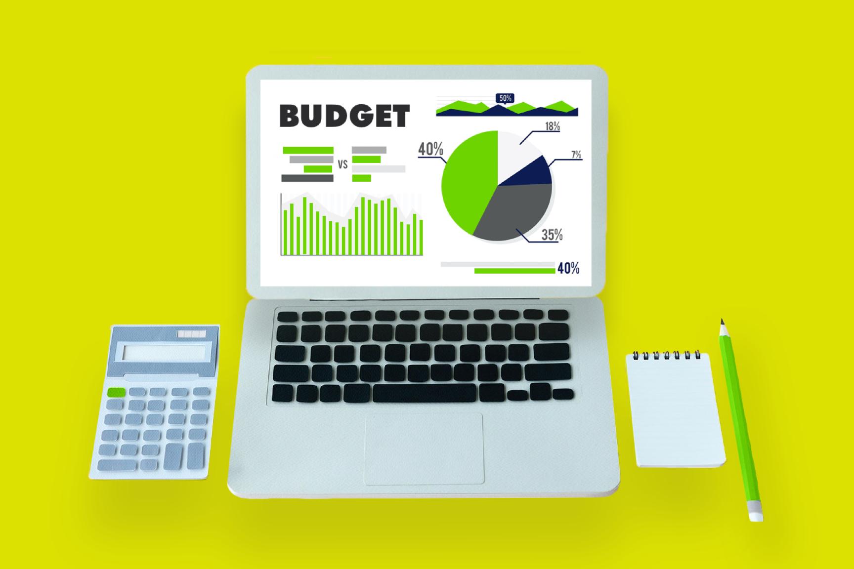 Software development budget