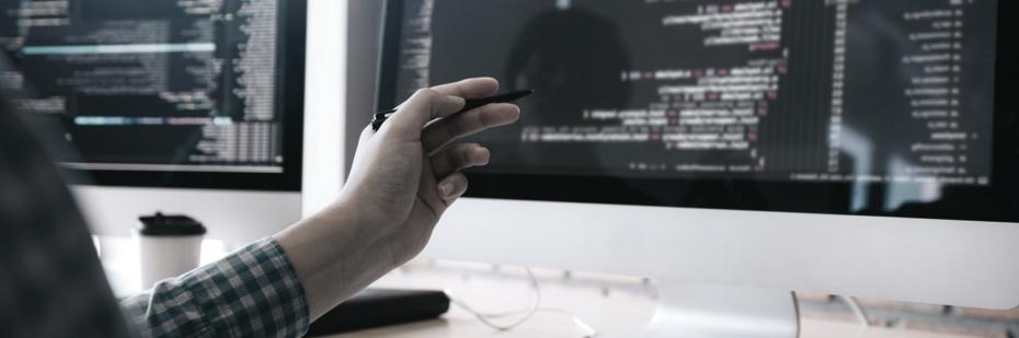 asp.net software development services